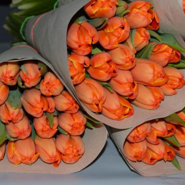 7 тюльпанов в крафтовой бумаге